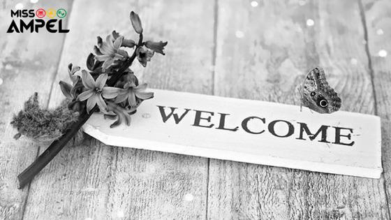 Bienvenidos al blog de Miss Ampel